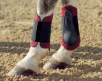 Tendon Boots - Pony Neoprene Boots hind